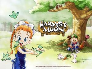 harvestmoonfriendsofmineraltown-01